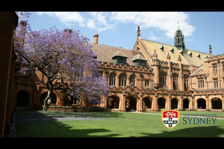 Estudia Inglés en la Uni Sydney, 3ª mejor Universidad de Australia, por sólo AUD 270 / semana