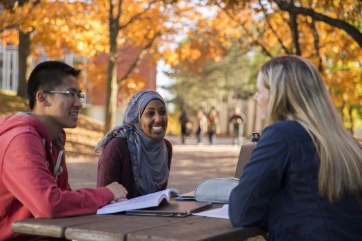 UNSW Global Scholarships