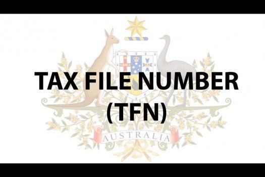 TFN(税号)你有吗?申请了还记得吗?图文攻略请收藏!