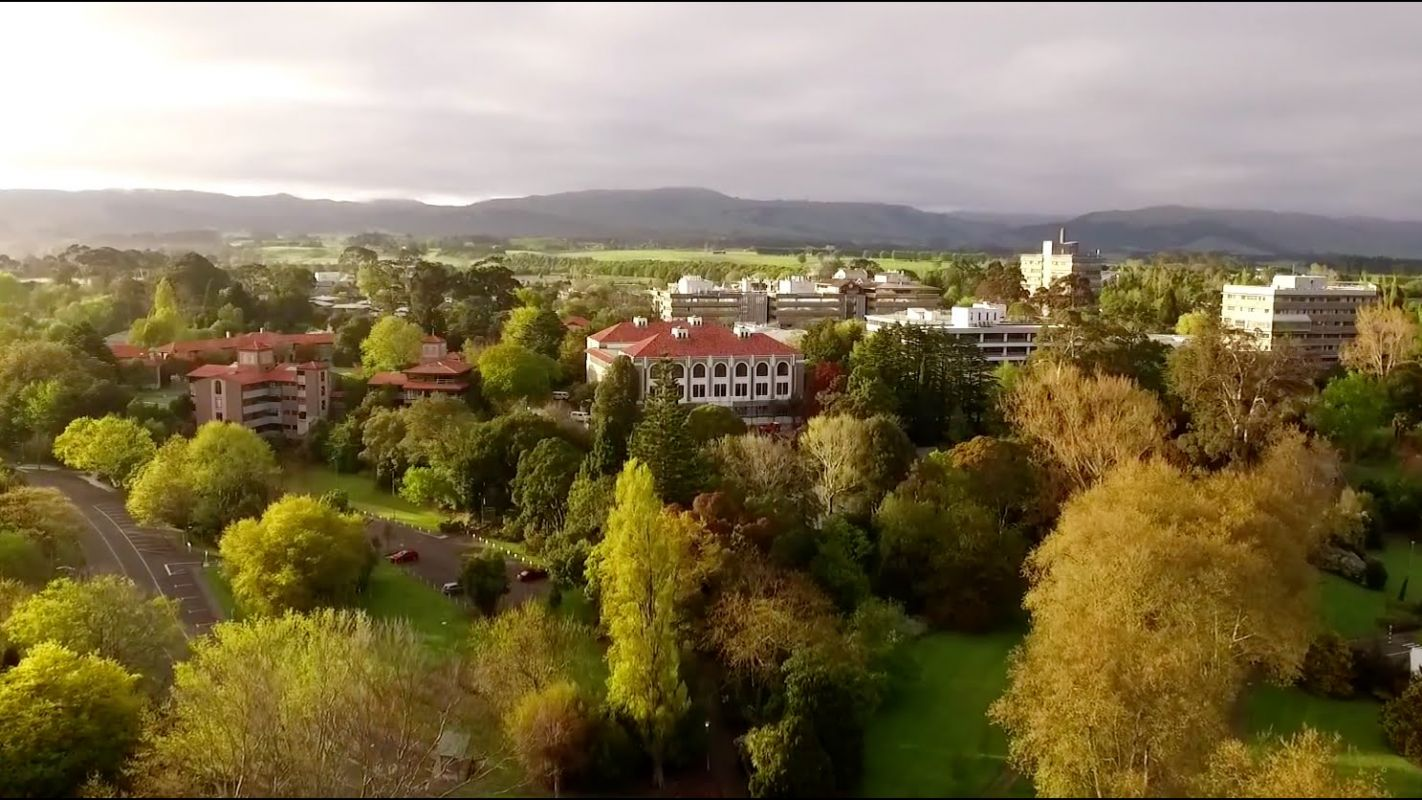 Massey University Campus 2
