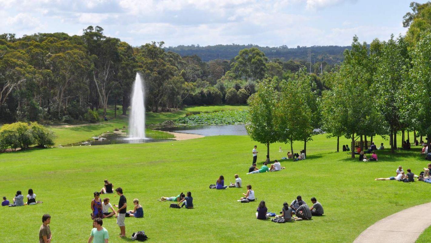 Macquarie University Campus 6