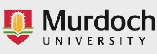 جامعة مردوخ