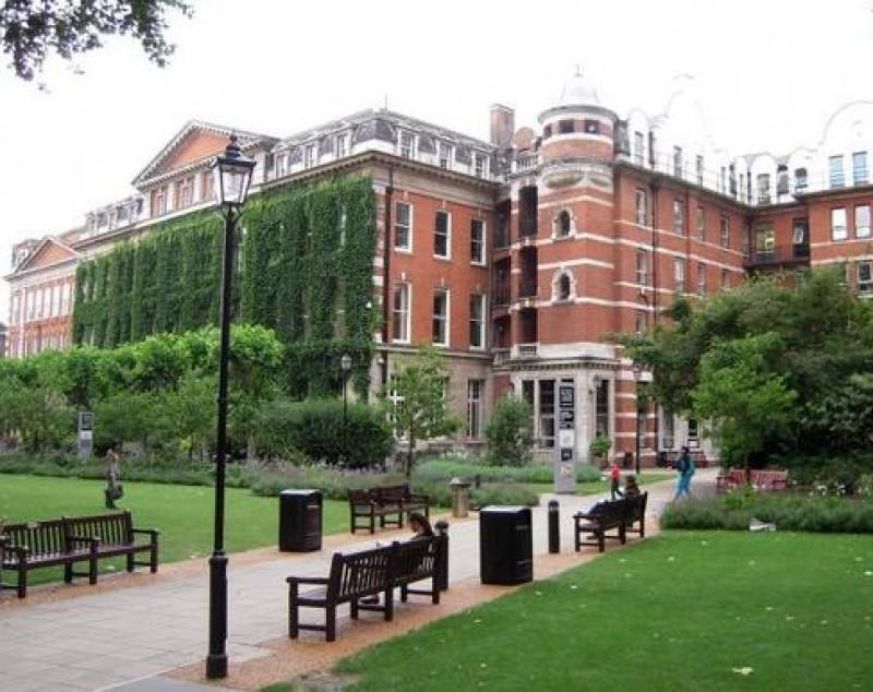 Looks on campus: marea -